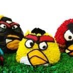 Angry Birds 3D Cakes @KatrinasKitchen