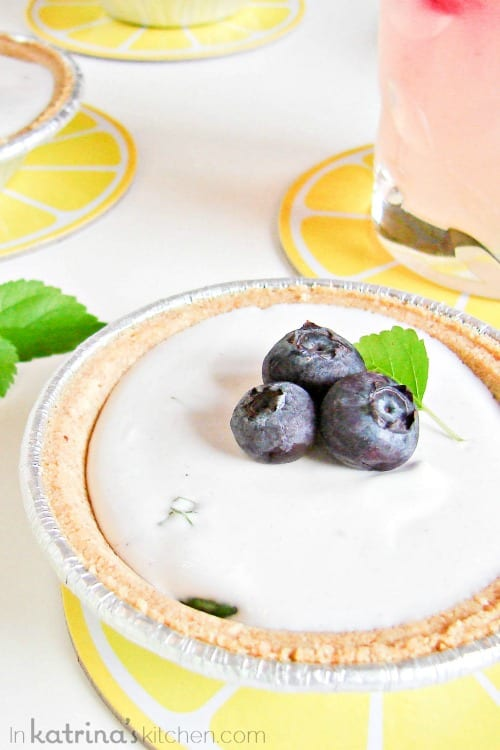 Frozen Blueberry Basil Lemonade Pies Recipe