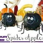 Chocolate Covered Spider Apples @KatrinasKitchen