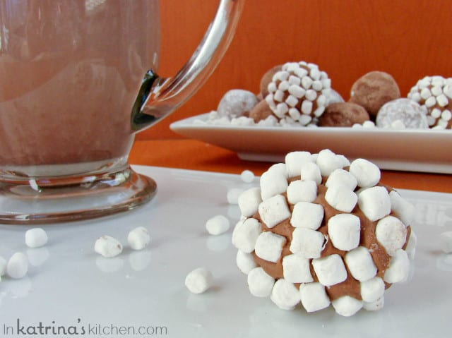 2 Ingredient Hot Chocolate Truffles from @KatrinasKitchen