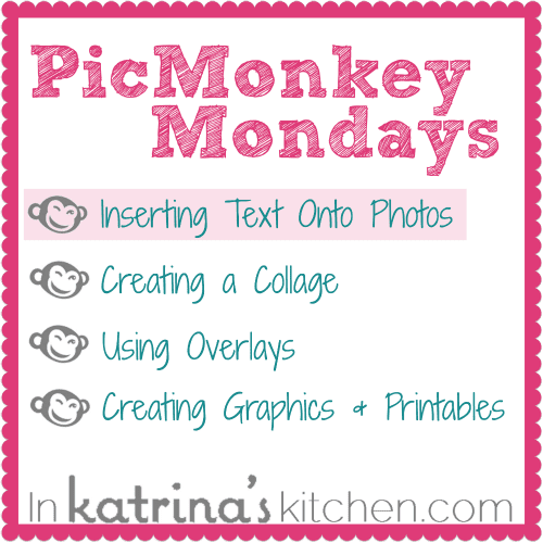 PicMonkey Tutorial Inserting Text Onto Photos from www.inkatrinaskitchen.com