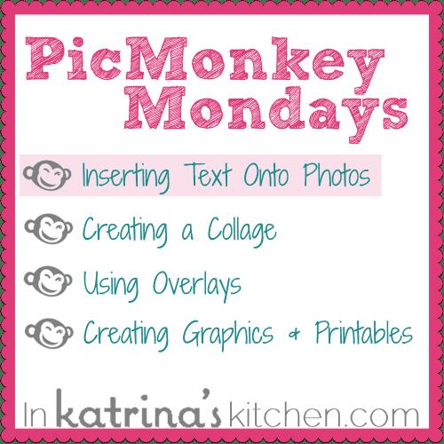 PicMonkey Tutorial Inserting Text Onto Photos