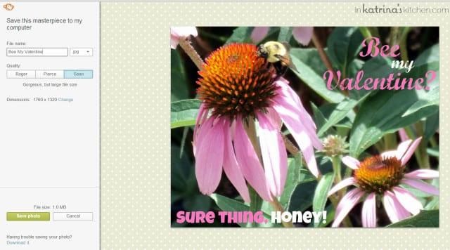 PicMonkey Tutorial- Inserting Text Onto Photos inkatrinaskitchen.com