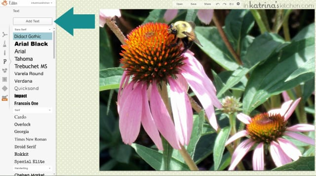 PicMonkey Tutorial bee on a purple flower