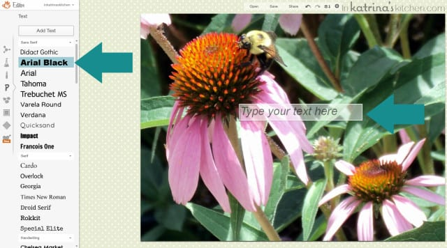 PicMonkey Tutorial- Inserting Text Onto Photos inkatrinaskitchen.com