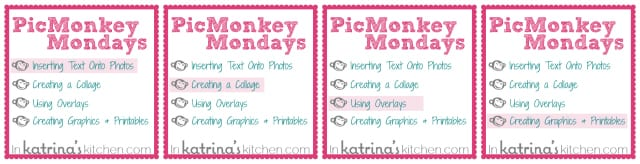 PicMonkey Tutorial   4 part series