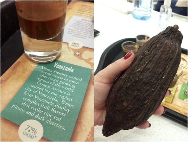 The Hershey Experience: Cacao Pod