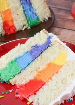 Extra Rich Vanilla Cake with Rainbow Frosting