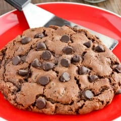 Double Chocolate Cookie Recipe makes one giant cookie! OMG!!