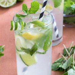Refreshing Non-alcoholic Nojito Recipe