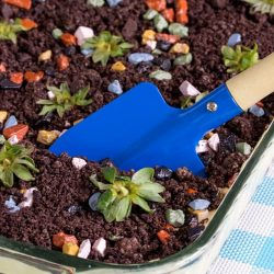Impress with this EASY Dirt Cake Recipe