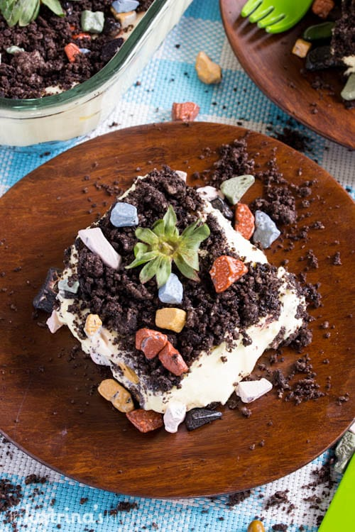 Dirt Cake is perfect for baby showers, gardening parties, and birthday parties.