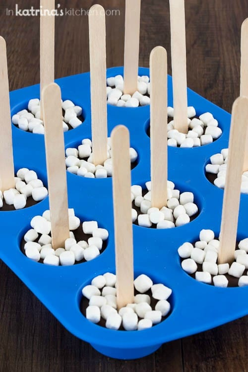 Hot Cocoa on a Stick Recipe