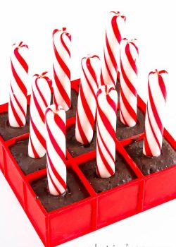 Peppermint Mocha Sticks