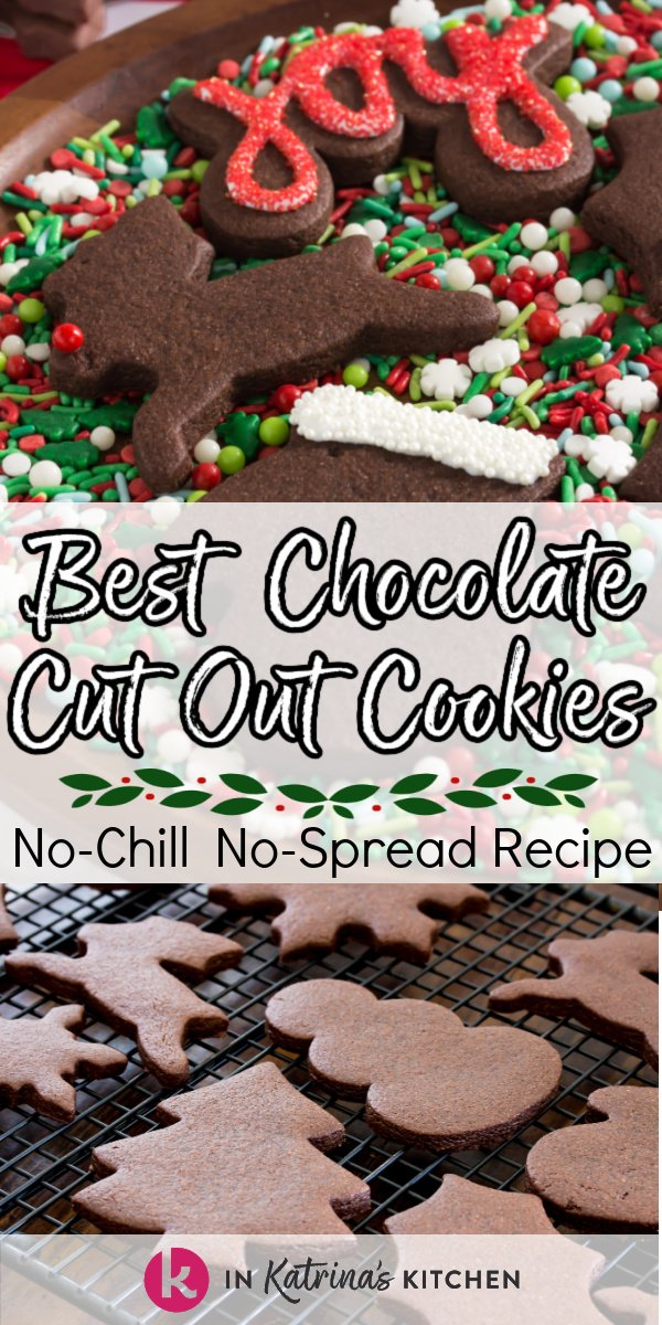 iced and plain chocolate cut out cookies in traditional Christmas shapes